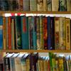 Hoogslaper met boekenkast